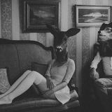 Felipe Lazarini - DJ Set - Animals in my House