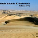 VA - Hidden Sounds & Vibrations (November 2014) CD2