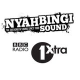 Nyahbingi Sound mix for Seani B's #ArtOfJuggling (BBC Radio 1Xtra)