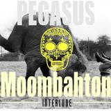 Pegasus - Moombahton Interlude