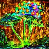 ACANTHA PSY (DJ SET) - The Arrival of the coloured Mushrooms - SPECIAL!!!
