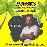 flowmingo