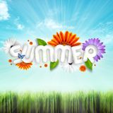 Snazzah - Summer Opening 2k15