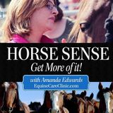 HorseSense Episode 7 - Talking about Dressage and Spirituality  with Catherine Birmingham