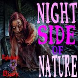 Night Side of Nature   Haunted Houses   Podcast