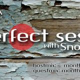 Perfect Session with Snorkle on DNA Radio Fm | episode: 010 | july.2016 /Host Mix/