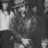 Especial Fields of The Nephilim (29-08-2013)