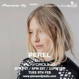 Perel - Pioneer DJ's Playground
