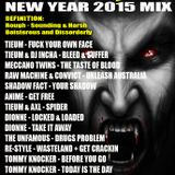 RAUCOUS BEHAVIOUR VOL 5 NEW YEAR 2015 MIX