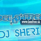 DJ Sheri @ BeeFree 2012 Contest Set
