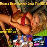 Arnold Beck Summer Chill Mix 2013 a tribute to Gestört aber Geil