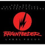 A.N.F.S.C.D : Brainfeeder Label Focus