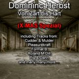 Dominic Herbst-Von Zart bis Hart (X-Mas Special) [only for promotional use]