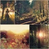 WinterCast#6: It was dark before I met you in the woods