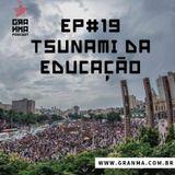 Resenha – Tsunami da Educação
