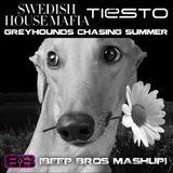Swedish House Mafia vs. Tiesto - Greyhounds Chasing Summer (Beep Bros Mashup)