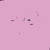Bold Beats #16