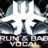 Weighty Plates Vocal DnB Vol.5 - Andy C, Shy FX, Wilkinson, DJ Zinc, Prototypes, High Contrast, Degs