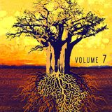 Roots, Music & Vizions 7