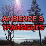 Ambience & Transients 033 - KCSB (06-05-15)