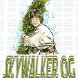 FADED FOO5 (Skywalker OG MIX)