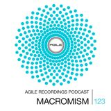 Agile Recordings Podcast 123 with Macromism