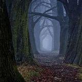 Double Universe - Lost in dark tunnel