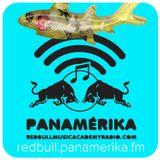 Red Bull Panamérika No.356 - Ceviche de tiburón 2015