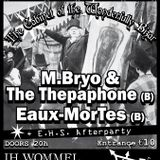 M.Bryo & the Thepaphone live in Wommel 27 June 2015