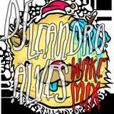 DJ Leandro Alves (Wake Mix)