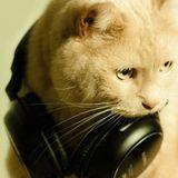 CAT#01