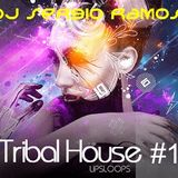 TRIBAL HOUSE #1