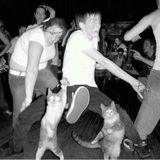 We cats be dancing pt.2
