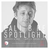 Shadowbox @ Radio 1 08/12/2013 - CALIBRE Spotlight