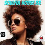 NIGEL B (SOULFUL/TRIBAL HOUSE MIX 33)