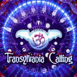 Logical Elements Dj Set @ Transylvania Calling Festival 2013