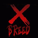 X-Breed - Hardcore DJ Contest Dance Valley #DV2014.