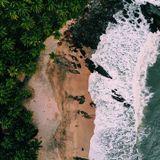 World Ocean 015 - AGENT [23-11-2018]