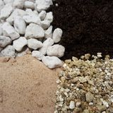 Seed Sowing Compost