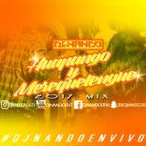HUAPANGO Y MEREQUETENGUE MIX DJ NANDO 2017
