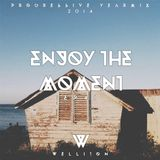 Welliton - Enjoy The Moment EP41 (Progressive Yearmix 2014)