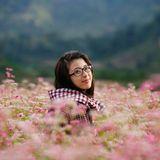 Hẹn hò mùa hoa tam giác mạch || Hạnh My