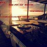 THE PIC-NIC ROOMS DELUXE SESSIONS@JSUNDAY