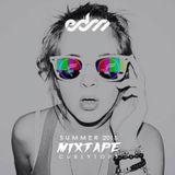 Summer 2015 EDM Mixtape - Curlytops