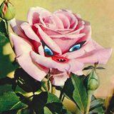 Minnie Dipple Infinite Series 34 14.12.17 Colourful Radio
