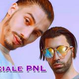 Speciale PNL (debut, parcours, stratégie etc) 29.03.19