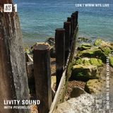 Livity Sound w/ Peverelist - 14th August 2018