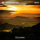 Eguana - Microcosmos Chillout & Ambient Podcast 029