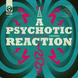 A Psychotic Reaction: Garage Punk Nuggets '65-'67, in Stereo [Expanded Edition]