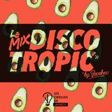 Discotropic mix by Jankev (Sept. - mix #24)